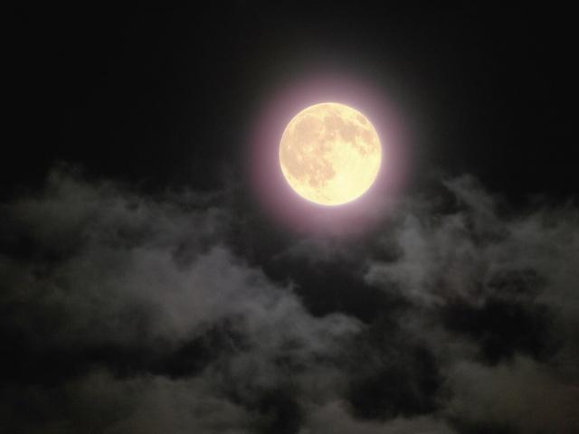 中秋の名月 十五夜やお供えの意味は?中秋の名月や十五夜は満月?